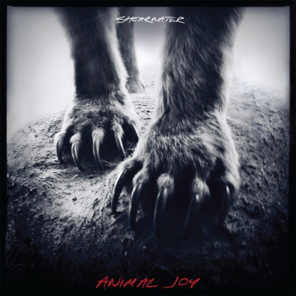 "Cover art for ""Animal Joy"" by Shearwater"